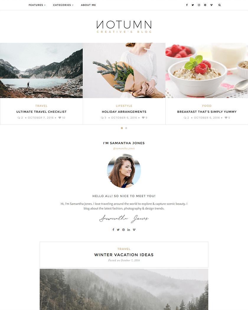 20+ Best Minimalist WordPress Themes